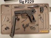 Sig P229 Complete Disassembly with Label